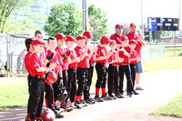 Avoca 9/10 Reds vs Red Sox