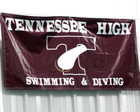 THS Swimming 2011/2012