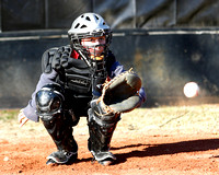 10U Diamond Elite Baseball 2015