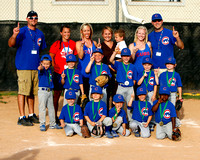 Avoca Tball Cubs vs White Sox Championship 6/5/2014