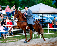 South Central Ruritan Horse Show 2017 Gallery 2